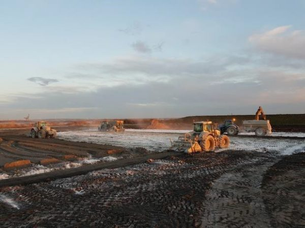 Reeds Ltd. vehicles at Amazon construction site, medway