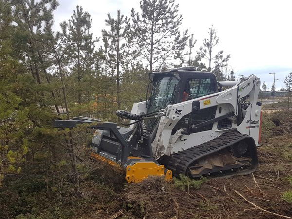 Forestry Land Clearance